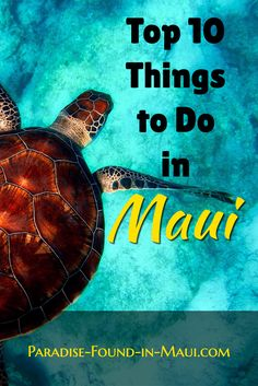 Top 10 Things to Do in Maui on Your Vacation