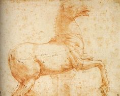 Study of a Sculpture of a Horse. c. 1516. Red chalk over stylus, 218 x 272 mm. Devonshire Collection, Chatsworth.