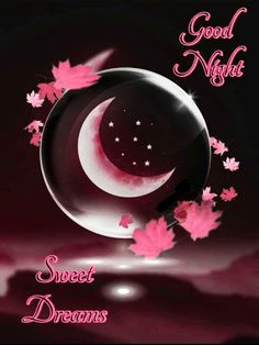 We send good night images to our friends before sleeping at night. If you are also searching for Good Night Images and Good Night Quotes. Good Night Flowers, Lovely Good Night, Good Night Prayer, Romantic Good Night, Good Night Everyone, Good Night Friends, Good Night Blessings, Good Night Gif, Good Night Wishes
