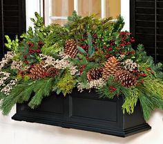 Fresh Evergreen Cuttings for DIY Holiday/Christmas Wreaths, Decorating Winter Window Boxes, Christmas Window Boxes, Christmas Planters, Christmas Porch, Outdoor Christmas Decorations, Christmas Centerpieces, Christmas Holidays, Christmas Wreaths, Christmas Hanging Baskets