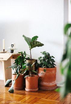 Mini Vasos, Interior Plants, Diy Painting, Indoor Plants, Planter Pots, Sweet Home, Rack, Home Decor, Crib