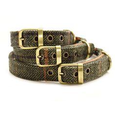 Tweed Dog Collar with Buckle Colour ‰12 Tweed
