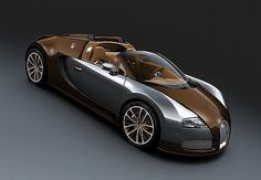 Bugatti Veyron Grandsport Visette Bronze and aluminum