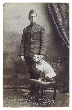 El sargento Stubby es el perro más condecorado en la 1ª Guerra Mundial tras servir 18 meses en las trincheras del frente occidental con el Regimiento 102º de EEUU.
