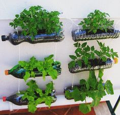 30 Stunning Low-Budget DIY Garden Pots and Containers - Container Gardening Vegetable Decoration, Diy Garden Decor, Balcony Garden, Garden Planters, Fall Planters, Diy Hanging Planter, Planter Ideas, Planter Boxes, Bottle Garden