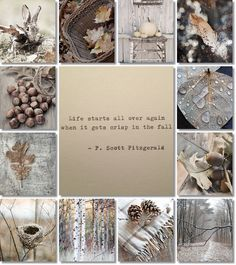 moodboard fall by Audrey T