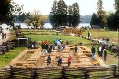 The 10 Best Fall Festivals in Northern Virginia Celebrate the season at Mount Vernon Fall Harvest Festival: Corn Bale Maze Fall Festival Decorations, Fall Festival Games, Fall Festivals, Washington Dc Travel Guide, Hay Maze, Harvest Day, Fall Carnival, Country Fair, Mount Vernon