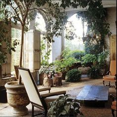 A garden inside the home
