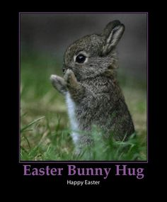 Cute Bunny Hug! Easter poems for children at:  http://www.e-forwards.com/2011/04/cute-easter-bunny-poems-for-young-children/