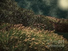 """""""Midnight Marsh"""" © 2016 RC deWinter ~ The full moon shines down on a salt marsh in Southport, Connecticut on a starry summer night. Available in a variety of media/sizes."""