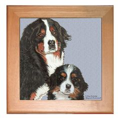 Trivet - Bernese Mountain Dog and Pup