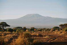 Voyage au Kenya : mon itinéraire de 2 semaines - Le Polyèdre Safari, Kenya Travel, Parc National, Parcs, Rest Of The World, Ivory Coast, Global Warming, Tanzania, Jet Lag