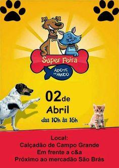 BONDE DA BARDOT: RJ: Adote um amigo realiza campanha de adoção de cães e gatos em Campo Grande, neste sábado (02/04)