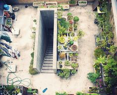 庭 上から by meguru_kaoru, via Flickr