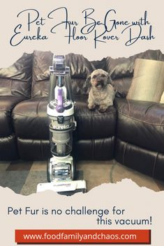 #ad The FloorRover Dash was created with pet owners in mind with powerful deep cleaning for both carpets and hard floors. Keep your house looking great with the Eureka pet vacuum. Read all about it in my new blog post. #PawsomePetsBBxx Best Pet Hair Vacuum, Pet Vacuum, Cuddling On The Couch, Family Movies, Deep Cleaning, Family Life, Dog Mom, Carpets, Floors