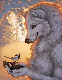 Anthropomorphic Wolf and a Little bird Arte Furry, Furry Art, Fantasy Wolf, Fantasy Art, Werewolf Art, Furry Wolf, Anthro Furry, Mythical Creatures, Amazing Art