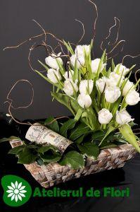 lalele cu vin Plants, Pictures, Flora, Plant, Planting