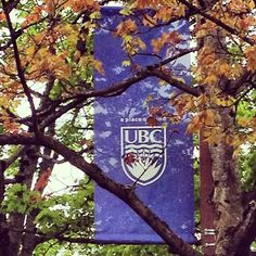 Good morning UBC. You look pretty today.