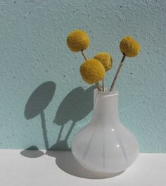 Dried billy buttons (for the gray bedroom)