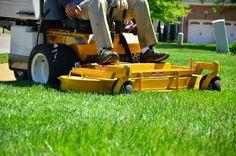 Cómo cuidar el césped en verano - http://www.jardineriaon.com/como-cuidar-el-cesped-en-verano.html