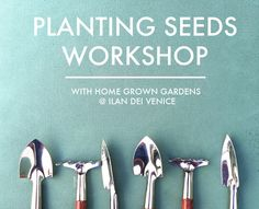 Join a seed-planting workshop with Ilan Dei Venice in California this Sunday!