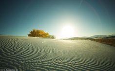 Desert sun.