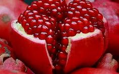 fruit close up - Google Search