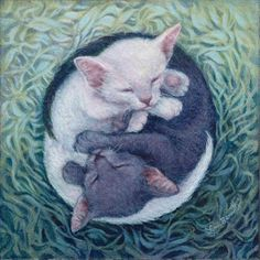 Ying Yang Kittens - by Lynn Bonnette