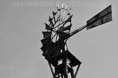 Windy by dMorrisonPhotography on Etsy, $15.00