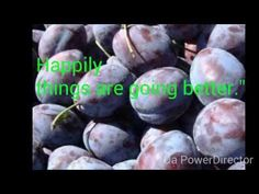"Feeling Well Tv - ""Pleiadian Message #9"" - YouTube"