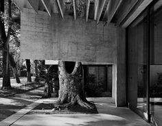 Pavillon des Pays Nordiques | Giardini della Biennale di Venezia (ph. Gabriele Basilico)