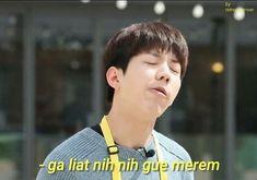 Memes Funny Faces, Funny Kpop Memes, Day6 Dowoon, K Meme, Young K, Anime Reccomendations, Korean Boy, Good Jokes, Derp