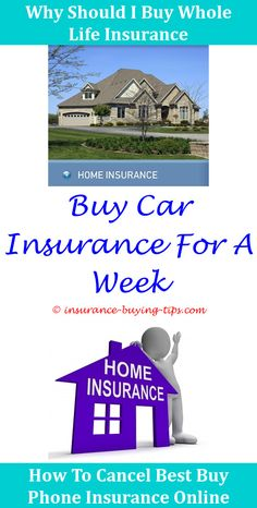 Insurance Buying Tips Did Texas Pass Bill To Make Women Buy Rape Insurance Should I Buy Life Insurance In My 20s Need Car Insurance Before Buying A Car Where To Buy Title Insurance,Insurance Buying Tips do you need gap insurance when buying a used car.What To Look For While Buying Health Insurance,Insurance Buying Tips how to buy workers compensation insurance in wyoming buy new car insurance grace period california insurance before buying used motorcyle trumb requirement to buy insura..