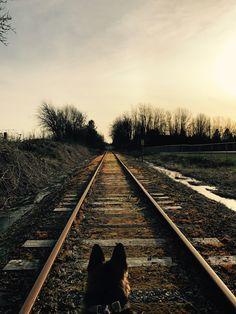 Pretty train tracks