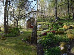Många bra tips om hur du skapar trädgårdsdrömmen