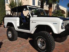 Black and White Bronco