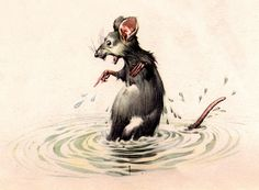this is what our rats look like when they hear water running...