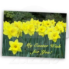 Easter Wish Card