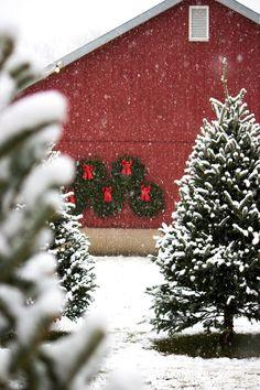 christmas snow.