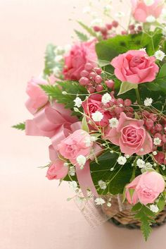 roses from st.claus by hanabi., via Flickr