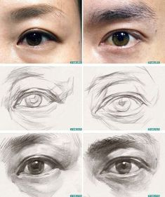 Pencil Drawing Step by Step Eye Draws (Realistic and Colorful) - Beautiful Words, Pencil Art Drawings, Realistic Drawings, Art Drawings Sketches, Human Anatomy Drawing, Anatomy Art, Drawing Eyes, Eye Drawing Tutorials, Drawing Techniques, Portrait Sketches