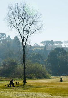 Parque Barigui, Curitiba Pr