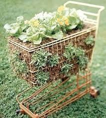 Image result for strange gardening displays