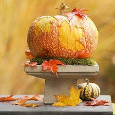 Traced-Leaf Pumpkin Centerpiece