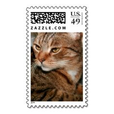 BROWN TABBY 1ST CLASS STAMPS