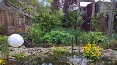 Garden in city center Dordrecht, the Netherlands