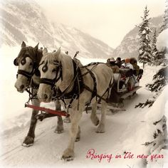 Sleigh bells ring, are you listening ....This is on my bucket list. To ride in a horse drawn sleigh in the snow.