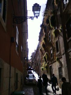 A Lisbona la natura si riappropria del proprio spazio