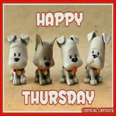 Hope your Thursday is amazing Happy Thursday Images, Good Morning Happy Thursday, Happy Thursday Quotes, Have A Great Thursday, Good Morning Wishes, Good Morning Images, Good Morning Quotes, Festival Image, Good Night Image
