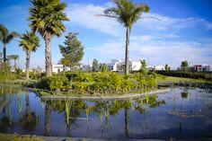 Espacios naturales increíbles, áreas comunes con diseños espectaculares, vialidades funcionales y estéticas; todo esto lo puedes encontrar saliendo de tu casa!  Ven y conoce la mejor comunidad planeada de la Ciudad de Puebla. #SoyLomas